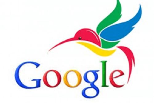Hummingbird Google