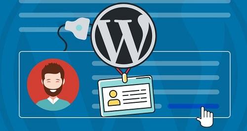 Author Description on WordPress